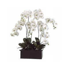"""White Orchids in Terra Cotta Pot 42"""" High Faux Flower"""