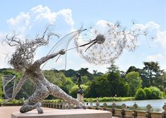 SPOTLIGHT: Stainless Steel Wire Fairies by Robin Wight UK-based artist Robin Wight uses stainless steel wire to form stunning, dynamic sculptures of winged fairies dancing in the. Robin Wight, Sculptures Sur Fil, Art Sculpture, Wire Sculptures, Steel Sculpture, Garden Sculpture, Sculpture Lessons, Abstract Sculpture, Fantasy Wire