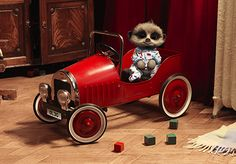 Baby Oleg in his vintage toy car Go Compare, Baby Meerkat, Oldies But Goodies, Family Album, Cute Characters, Kids Cards, Vintage Toys, Antique Cars, Cute Animals