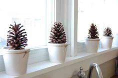 fenêtre décorée avec des pommes de pin en pots