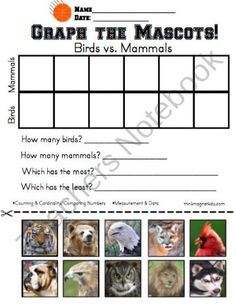 March Madness Basketball Activities for K-1 product from Think-Magnet on TeachersNotebook.com