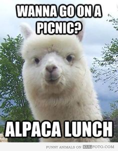 """""""Wanna go on a picnic?"""" Hey Priss this is for you !!!"""