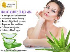 Healing Benefits Of #AloeVera!! www.thenomadicspalon.com  #Tips #Beauty #Thenomadicspalon #Skincare #HairFall