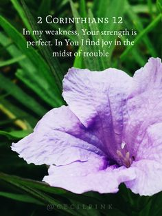 In my weakness, Your strength is perfect. In You I find joy in the midst of trouble. 2 Corinthians 12