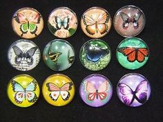 Noosa Chunks for Noosa Charm Bracelets. LIMITED OFFER EXTRA 25% OFF WHEN YOU BUY 3 OR MORE!  http://www.ebay.com.au/sme/muzzie4848/Extra-25-off-when-you-buy-3/so.html?_soffid=5015708007&_soffType=TargetedOffer&_trksid=p2047675.m2197