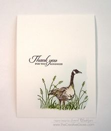 wetlands stamp set