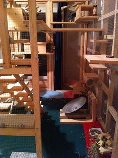 Huge wooden chinchilla cage with stairs and lots of ledges.