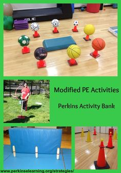 Collage of modified PE activities