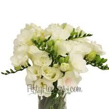 Image result for white freesia