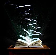 Reading lets your imagination take flight!