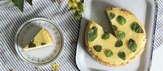 Cheesecake s grepovou polevou Koľkokrát upečieš #cheesecake, toľkokrát je iný. Tento je s polevou pre odvážnych. #recept http://varme.dennikn.sk/recipe/cheesecake-s-grepovou-polevou/