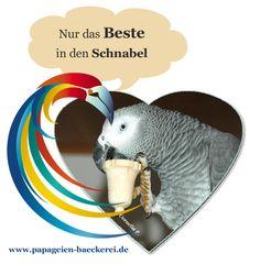 Bei uns gibt es ausschließlich das BESTE. Versprochen :-) www.papageien-baeckerei.de