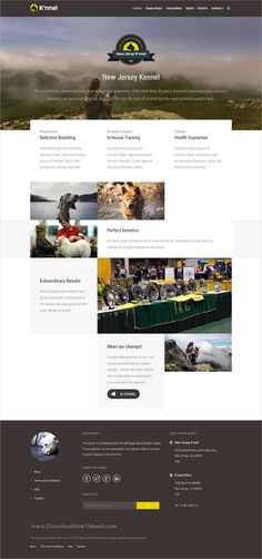 Knnel is beautiful 5in1 responsive #WordPress theme for #pets care and #kennel clubs websites download now➩  https://themeforest.net/item/knnel-ultimate-dog-breeder-wp-theme/19367837?ref=Datasata
