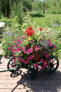 Container Gardens a profusion of colorful annuals looks exuberant in a whimsical container like this little wagon.