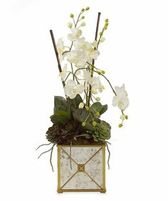 John Richard Mirrored Orchids - http://yourflowers.us/?p=4404