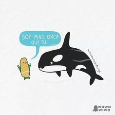 Soy mas orca que tuu Spanish Jokes, Funny Spanish Memes, Spanish Class, Punny Puns, Fun Illustration, Humor Grafico, Funny Cartoons, Cute Drawings, The Funny