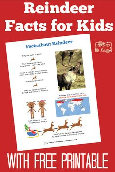 Fun Reindeer Facts for Kids. Great learning activity for Christmas (and cheat sheet)!
