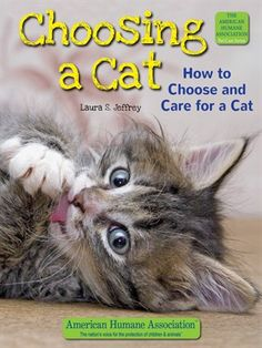Cover of Choosing a Cat