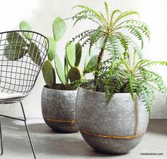 Roost Braza Tall Planter - Set Of 2