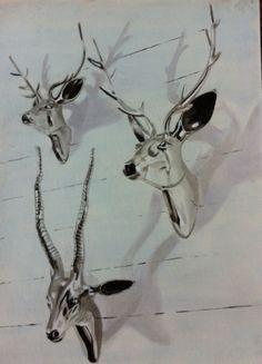 Animal skulls Painting  GB