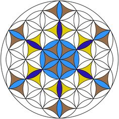 The Flower of Life is a figure in sacred geometry that consists of 19 interlocking circles. Sacred geometry is a branch of some religious, New Age, or occult belief systems that ascribes special properties to certain 2-D and 3-D geometric shapes...