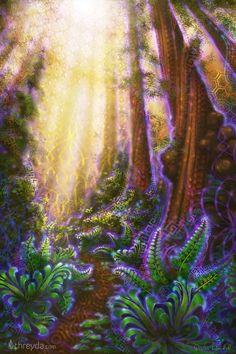 MettaGrove by Simon Haiduk Canvas Prints, Spiritual Meditation, Guided Meditation, Meet The Artist, Forest Painting, Cool Art, Fun Art, Vinyl Wall Art, Visionary Art