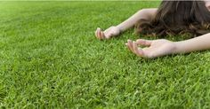 These lawn tips are perfect for the busy family who wants a lawn their kids can enjoy, but does not have a lot of time or equipment to make it happen.