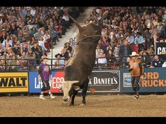 Professional Bull Riders - The PBR Says Goodbye to Mick E Mouse