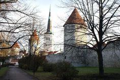 Северная сказка - Таллинн: Эстония, Таллинн, Таллин,