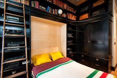 Incorporate a Murphy bed into a home library, complete with library ladder for accessing high shelves.