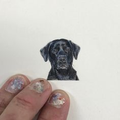 Handle every situation like a dog. If you can't eat it or play with it, just per on it and walk away. Mini Paintings, Watercolor Paintings, Watercolors, Ant Art, Black Labrador Retriever, Ants, Amazing Art, Dog Cat, Miniatures