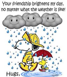 Your Friendship brightens my day, no matter what the weather is like!