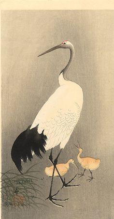 Ohara Koson 小原古邨 (1877-1945) Japanese