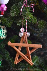 Best DIY Ornaments for Your Tree - Best DIY Ornament Ideas for Your Christmas Tree - Cinnamon Star Ornaments - Cool Handmade Ornaments, DIY Decorating Ideas and Ornament Tutorials - Creative Ways To Decorate Trees on A Budget - Cheap Rustic Decor, Easy Step by Step Tutorials - Holiday Crafts for Kids and Gifts To Make For Friends and Family http://diyjoy.com/diy-ideas-christmas-tree