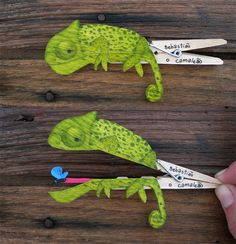 The crafting studio Molas & Co. is devoted to one thing: finding art and amusement in the hinge of a clothespin. This chameleon is one of many hungry clothespin animals.