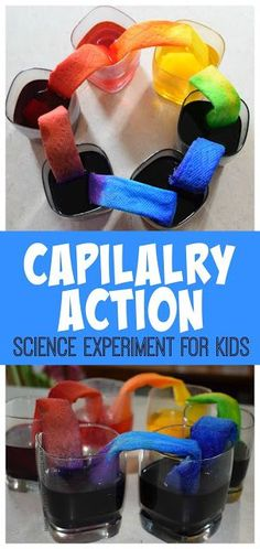 Capilalry Action Science Experiment for Kids - This is such a fun way for kids to explore and learn with a hands on science project for toddler preschool prek kindergarten first grade grade grade grade grade grade. EASY and QU Science Week, Summer Science, Science Projects For Kids, Preschool Science, Summer Activities For Kids, Teaching Science, Science For Kids, Stem Activities, Toddler Preschool