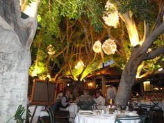 LA VALLAURIS; french cuisine. Gorgeous outdoor dining and NEVER disappoints! 5 Star.