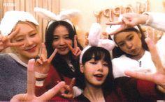 Blackpink Lisa, Blackpink Jennie, Melanie Martinez, Yg Entertainment, K Pop, Billie Eilish, South Korean Girls, Korean Girl Groups, My Girl