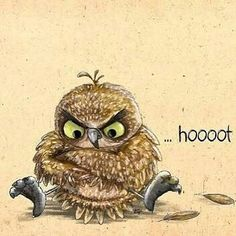 """Amazing I love it. .!!   From :  @evereybaggins -  Because @thegirlfromhell kept sending me owl pics with captions """"this is you when insert scenario here"""" . For info about promoting your owl art or crafts send me a direct message @owl.gifts or email owl-gifts@outlook.com  . Follow @owl.gifts for beautiful and inspiring owl images and videos every day! . #owl #owls"""