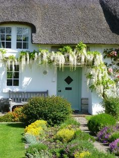 ivy on the wall. white climbing wisteria flowers on a cottage wall. glicine bianco rampicante sul muro di un casa di campagna. Style Cottage, Cute Cottage, Old Cottage, Cottage Homes, Storybook Homes, Storybook Cottage, English Country Cottages, Thatched Roof, English House