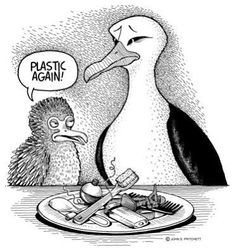 This is the reality of our polluted oceans. :(
