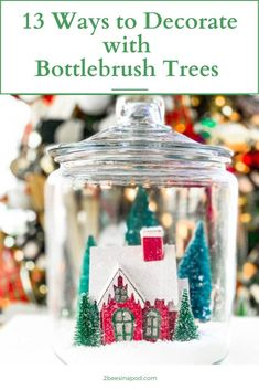 13 Ways to Decorate with Bottlebrush Trees