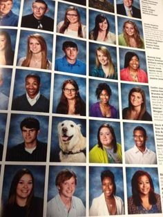 A retiring school dog who got into the senior section of the yearbook.