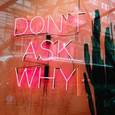 DON'T ASK WHY #quote #quotes #quoteoftheday #lovequotes #lifequotes #fashionquotes #likes #like4like #likeforlikes #regram #repost #igers #instalike #instagood #instalove #instafashion #instastyle #woman #girl #neon #pic #instapic #picoftheday #pink #wednesday