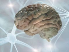[WEB] UH Engineer Receives $3.7M to Stop Epileptic Seizures Before They Begin - University of Houston Deep Brain Stimulation, Obsessive Compulsive Disorder, Signal Processing, Brain Waves, Discovery, Creativity, March, Events, News