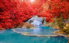 Download wallpapers lake, autumn, forest, red trees, blue lake, autumn forest