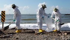 Cleaning Up the British Petroleum Oil Spill.