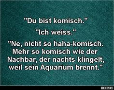 'Du bist komisch.'.. 'Ich weiss...' Some Quotes, Funny Pins, Man Humor, Amazing Quotes, Good Mood, Funny Cute, Writing Prompts, Funny Jokes, Haha