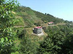 Grundstück mit Haus in Trabzon - 1.830 Meerblick Grundstück mit Rohbau Haus in natürliicher Umgebung in Trabzon Darica