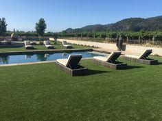 Project: Napa Artificial Grass